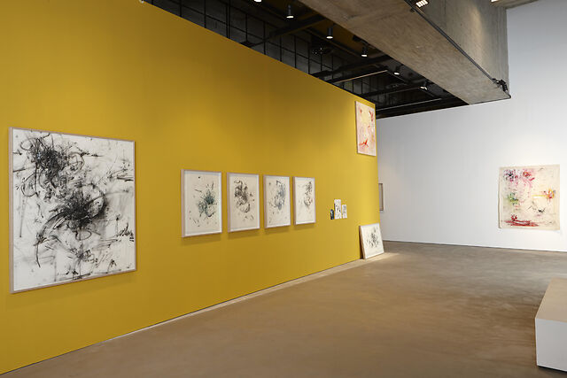 Installation shot, Our Dreams are a Second Life, 2020, Saleh Barakat Gallery