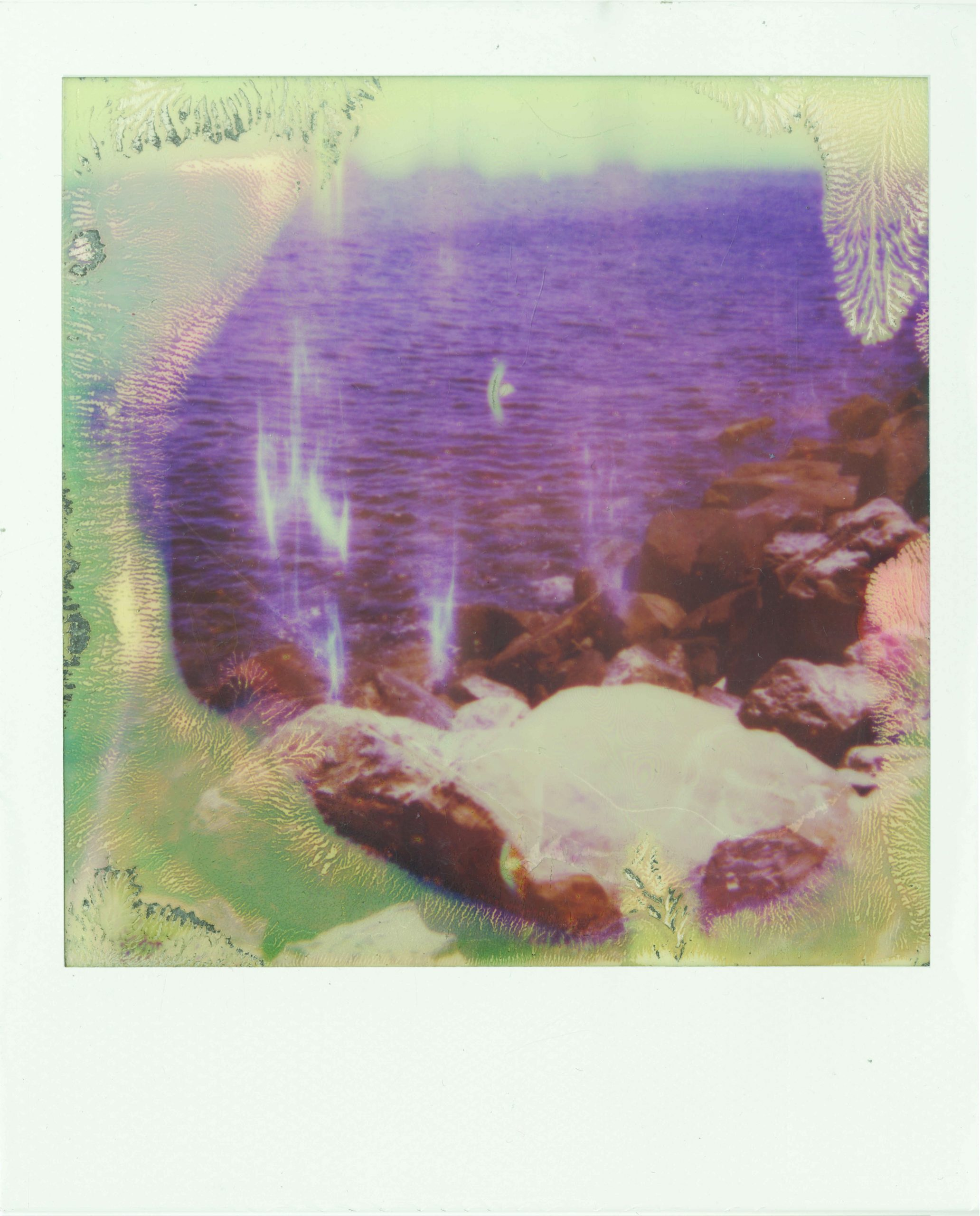 Untitled, Tarifa #3, 2019, Polaroid, 4.25 x 3.5inches